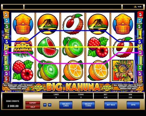 Big Kahuna Machine à Sous Gratuit (9 Lignes) Microgaming