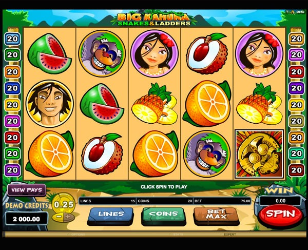 Big Kahuna: Snakes and Ladders Machine à Sous Gratuit (15 Lignes) Microgaming