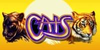 Cats Jouer Machine à Sous
