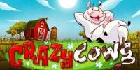 Crazy Cows Jouer Machine à Sous