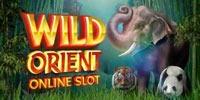 Wild Orient Jouer Machine à Sous