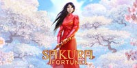 Sakura Fortune Jouer Machine à Sous