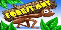 Forest Ant Jouer Machine à Sous